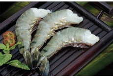 Raw	HLSO	Black	Tiger	Shrimp